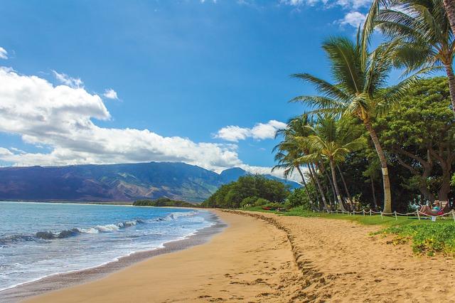 Dovolenka na Havaji